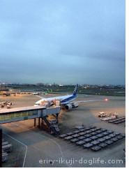 大阪空港展望デッキで遊ぶ子供