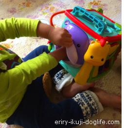 フィッシャープライス バイリンガル・ラーニングボックスで遊ぶ息子