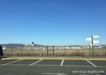 駐車場から見た空港の様子