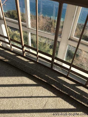 回転展望デッキの喫茶店では、少しずつ動く床に驚きです