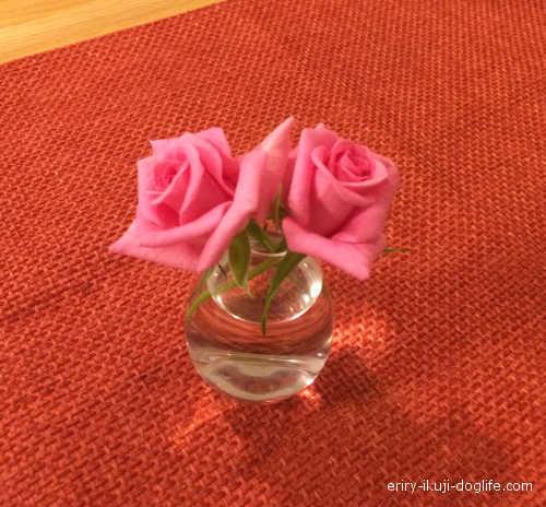一輪挿しに飾ったバラの花