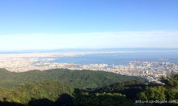 六甲山 六甲ガーデンテラスから見える景色 大阪方面