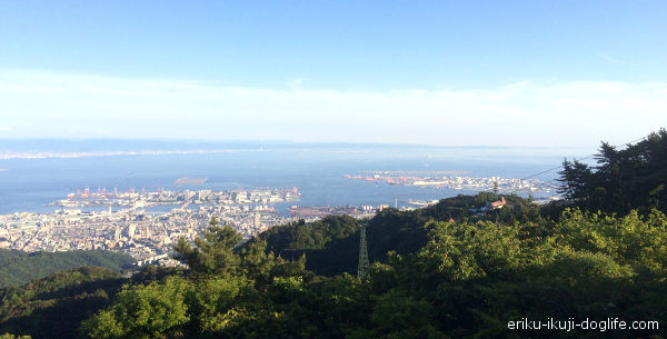 六甲山 六甲ガーデンテラスから見える景色 神戸方面