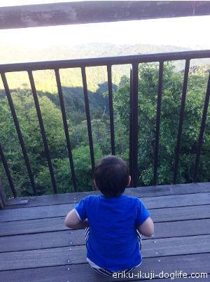 テラスからじっと景色を眺める息子