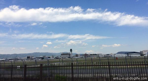 伊丹スカイパークから見た伊丹空港