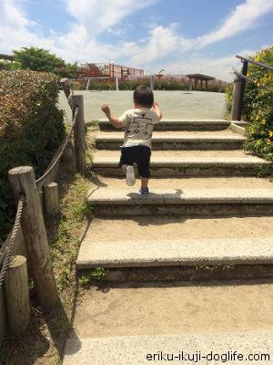 遊具に向かって楽しそうに走る息子