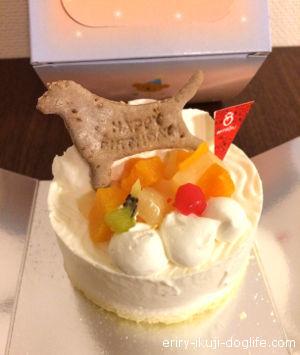 犬用ホールケーキ