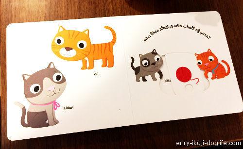 コストコで見つけた英語の本 指で動かすしかけ絵本「Pets」