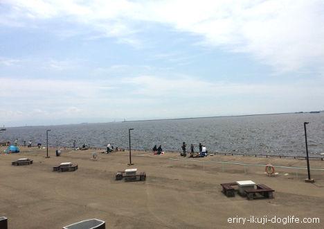 海釣り場も 芝生の広がる広場で親子でのんびりと鳴尾浜臨海公園