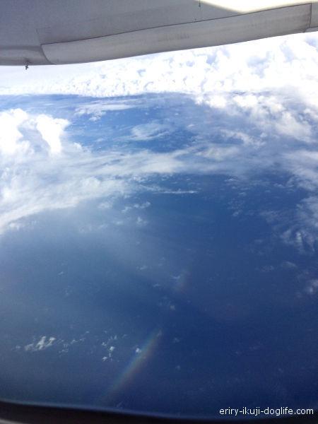 飛行機から虹が見えてとてもきれいな景色1
