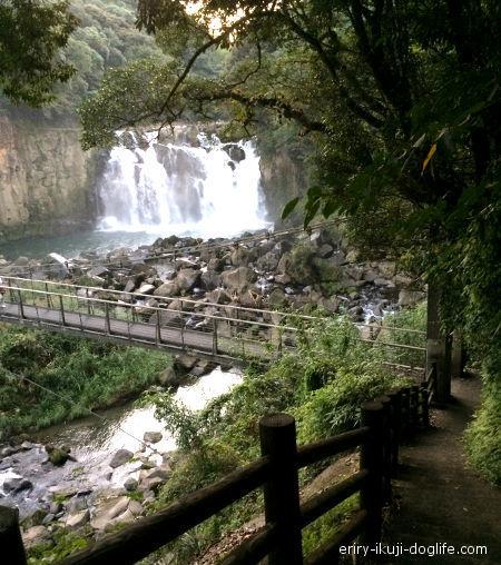 関之尾滝階段を下ると滝が見えてきます