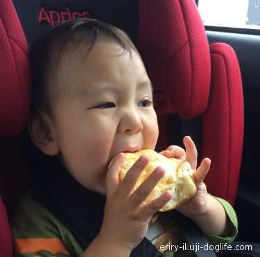 エスケール 生クリームパンをほおばる息子